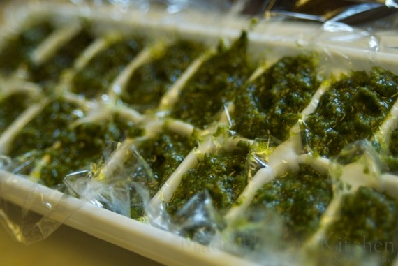 Pesto Cubes